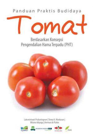 Panduan Praktis Budidaya Tomat