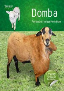 """Buku Buku EXO """"Domba Jumbo"""""""